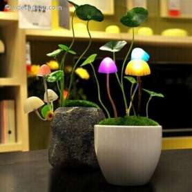 Lampe veilleuse Avatar