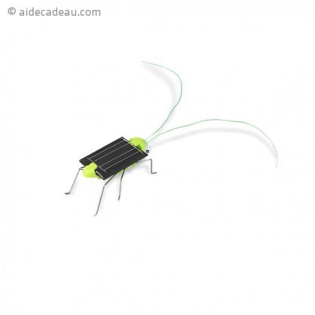 Criquet à énergie solaire
