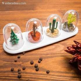 Set de boîtes à épices quatre saisons
