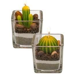 Bougies décoratives en forme de cactus en verre