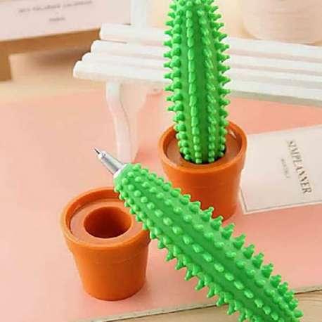 Stylo cactus en pot