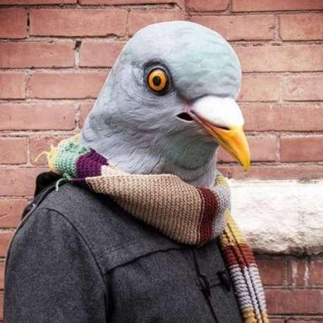 Masque de pigeon en latex