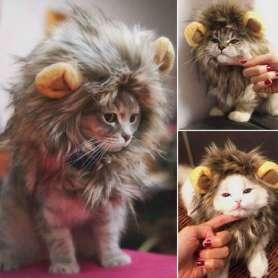 Costume crinière de lion pour chat et petit chien