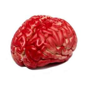Cerveau artificiel